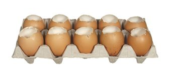 Box empty chicken eggs isolated on white background. Stock Photos