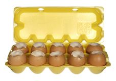 Box empty chicken eggs isolated on white background. Stock Images