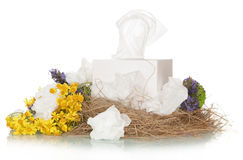 Box with facial wipes Royalty Free Stock Images