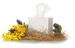 Box with facial wipes Royalty Free Stock Image