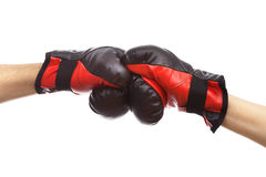 Box fight Stock Image
