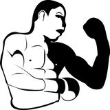 Box fighter Royalty Free Stock Photos