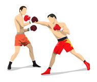 box fighting. Box fighting on white background. Two men in boxing gloves and uniform Stock Images