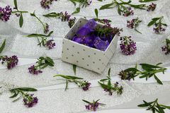 The box is filled with purple flowers on the surface covered Stock Image