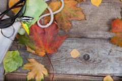 Box a fishing tackles on board with leafs autumn Royalty Free Stock Photo