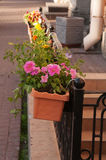 Box with flowers on fence of city house Stock Images