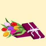 Box with flowers tulips. Vector illustration Stock Photography