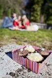 Box of Cupcakes at Picnic. Box of four decorated cupcakes at a picnic Stock Photo