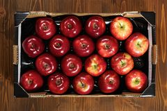 Box of fresh apples Royalty Free Stock Photos