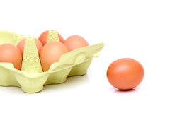 Box of fresh eggs Stock Photos