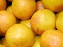 Box of fresh grapefruit Royalty Free Stock Image