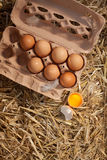 Box of fresh hens eggs on straw Royalty Free Stock Image