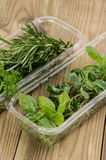 Box with fresh Herbs Stock Image