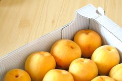 Box of fresh, organic, apricots. Top view of fresh organic apricots in a box Royalty Free Stock Photos