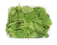 Box of fresh organic spinach Stock Photography