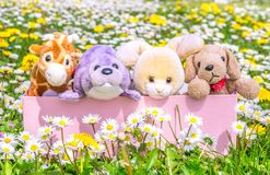 Box full of puppets on a beautiful flowered meadow Royalty Free Stock Photos