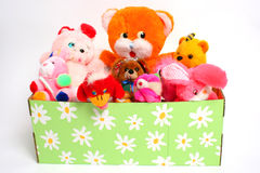 Box full of puppies. Colorful phot of box full of puppies Stock Photos