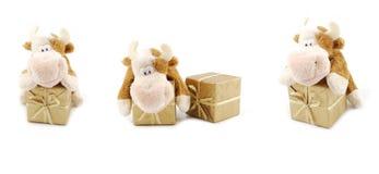 box gift Στοκ Φωτογραφία