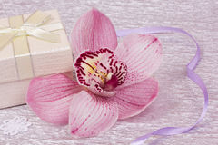 Box for gift and orchid Royalty Free Stock Image