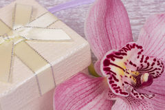 Box for gift and orchid Royalty Free Stock Photography