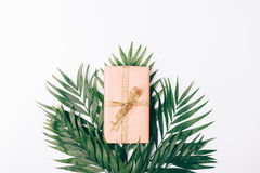Box with gift and ribbon and palm leaves Royalty Free Stock Photography