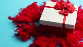 Box with a gift, tied with a ribbon placed on red feathers stock video