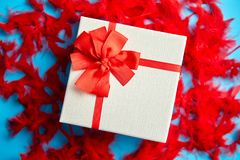 Box with a gift, tied with a ribbon placed on red feathers royalty free stock photos