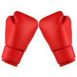 Box gloves white Royalty Free Stock Photos