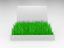 Box with a grass Stock Image