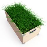 Box with grass Stock Photos