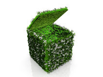 Box with grass and flowers. Open cube with grass and flowers Royalty Free Stock Images