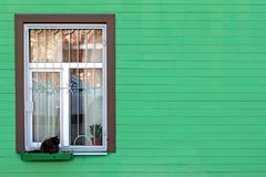 In the box at the green home window the cat is sitting. In the box at the green home window the cat is sitting royalty free stock images