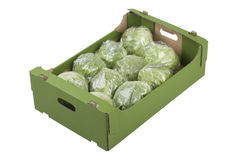 Box of Iceberg Lettuces Stock Photos