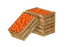 box isolated wooden Вполне оранжевого плодоовощ белизна изолированная предпосылкой бесплатная иллюстрация