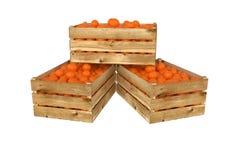 box isolated wooden Вполне оранжевого плодоовощ белизна изолированная предпосылкой иллюстрация вектора