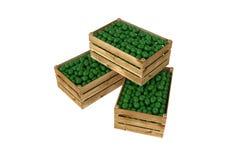 box isolated wooden Вполне плодоовощ известки белизна изолированная предпосылкой бесплатная иллюстрация