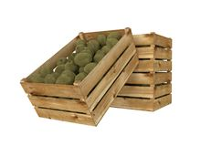 box isolated wooden Вполне плодоовощ кивиа белизна изолированная предпосылкой иллюстрация штока