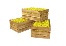box isolated wooden Вполне плодоовощ лимона белизна изолированная предпосылкой иллюстрация вектора