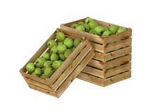 box isolated wooden Вполне плодоовощ яблок белизна изолированная предпосылкой бесплатная иллюстрация