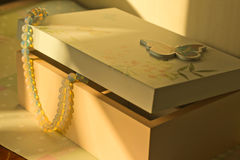 Box with jewelry Stock Image