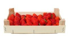 box jordgubbar arkivfoton