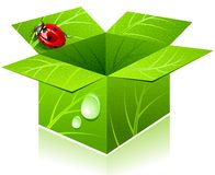 Box & lady-bug. Royalty Free Stock Images