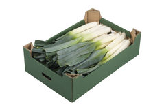 Box of Leeks Royalty Free Stock Photos