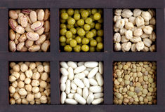 Box of legumes Royalty Free Stock Photography