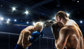 Box match best moments . Mixed media Royalty Free Stock Images