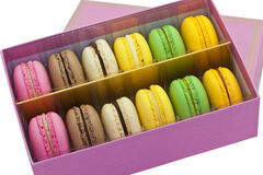 Box of multicoloured macaroon biscuits. Stock Photography