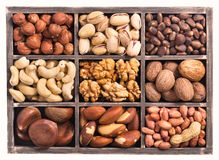 Box of nuts royalty free stock images