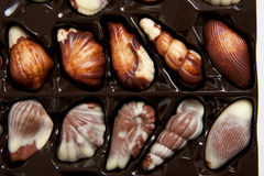 Free Box Of Chocolate Candies Stock Photography - 17165812
