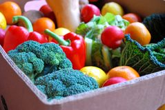 Free Box Of Fruit And Veg 2 Stock Photos - 7536223