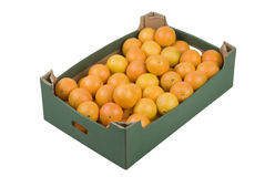 Box of Oranges Stock Photography